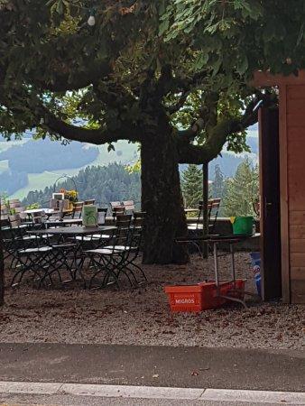 Emmenmatt, Switzerland: TA_IMG_20170731_132625_large.jpg