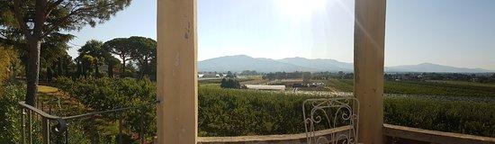 Alberoro, อิตาลี: Vue de la tour.
