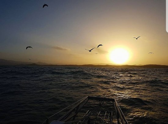 Gansbaai, South Africa: sunrise as we set out