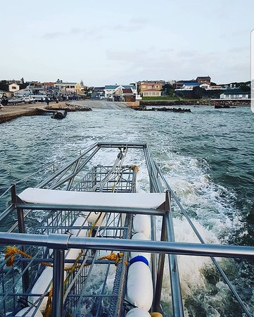 Gansbaai, South Africa: leaving the dock