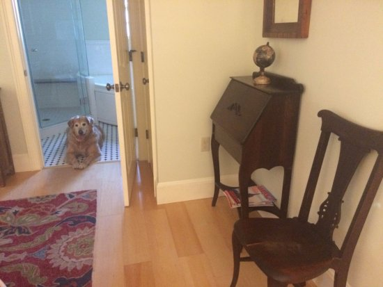 Betlehem, NH: Pet Friendly Crawford Suite!