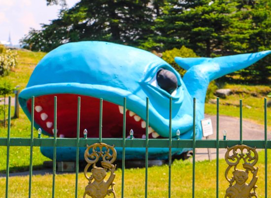 Noel Au Chateau : There is a nice park right next to the store where they say you can see whales