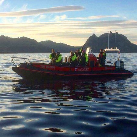 Stamsund, Norveç: Lofoten fishing & searafting
