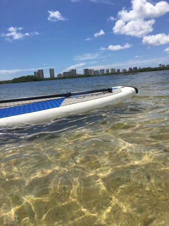 North Palm Beach, FL: beautiful day paddle boarding in singer island