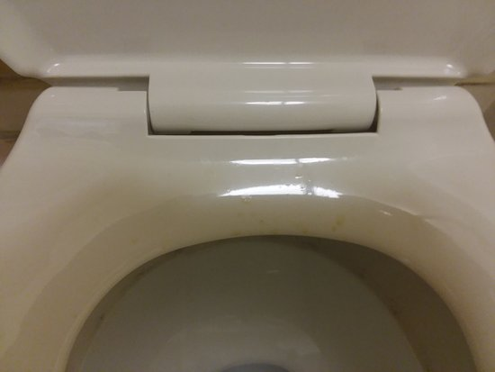 Quality Inn : Urine on toilet seat was finally cleaned the next morning.