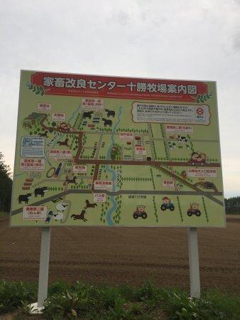 Otofuke-cho, Giappone: photo6.jpg