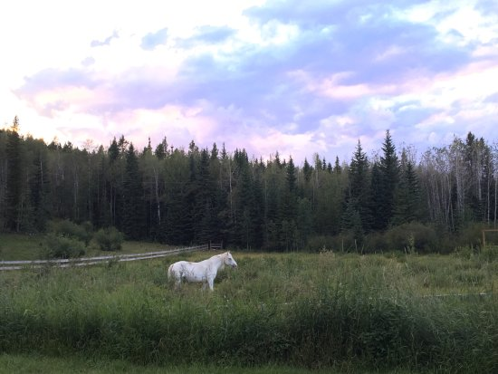 Bragg Creek, Canada: photo1.jpg