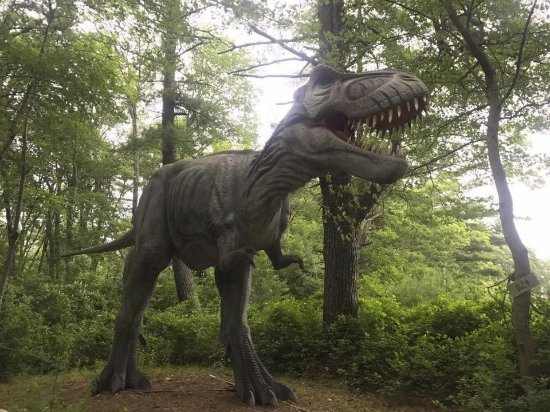 b5dbfa60a7 Edaville Family Theme Park: Dino Land - several Animatronic dinos to view  (not much