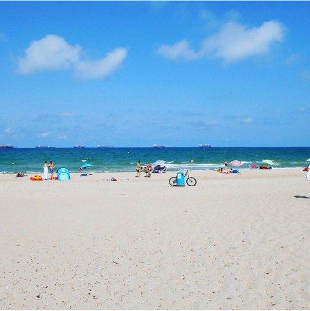 El Saler Beach Review