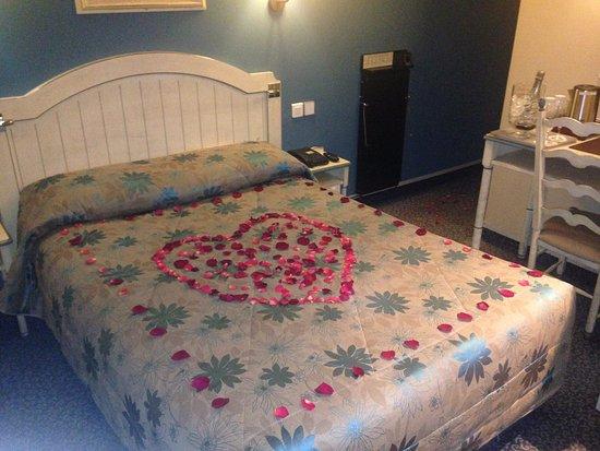 Hotel Daumesnil-Vincennes : petali freschi in camera