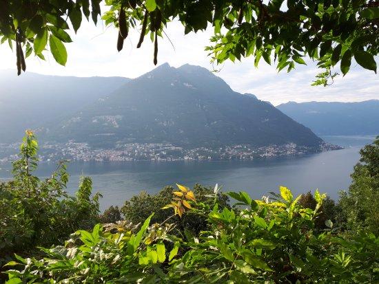 Molina di Faggeto Lario, Italy: B&B Villa Le Ortensie