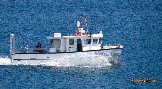 Charter Boat Volante