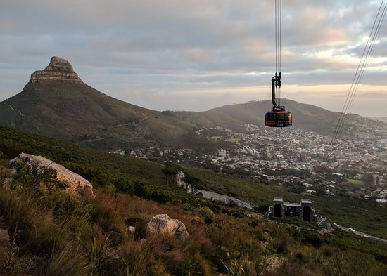 Hike Table Mountain: Lion's head and the city bowl on the way up
