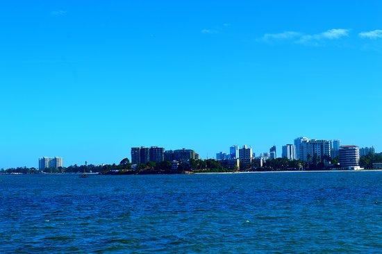 Beauty Of Dar Es Salaam - タン...