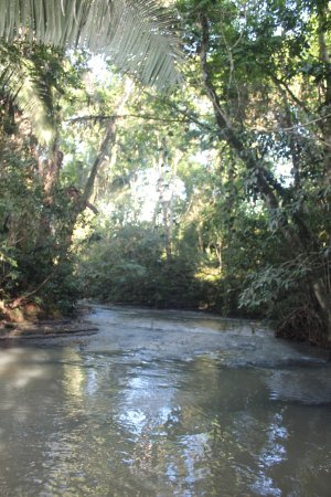 Punta Gorda, Belize: Machaca River at the top of our property