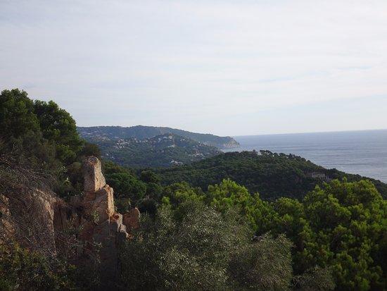 Hotel El Far de Sant Sebastia: from the  room