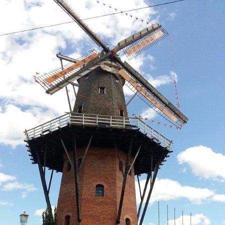 Holambra, SP: Dia ensolarado em pleno inverno, com uma sensação sensacional de estar na Holanda!