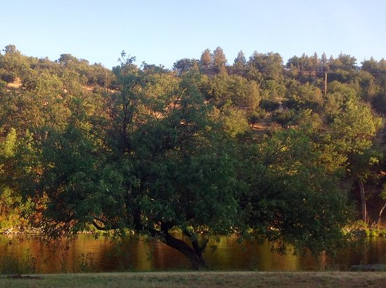 Hornbrook, CA: Beautiful view from our RV