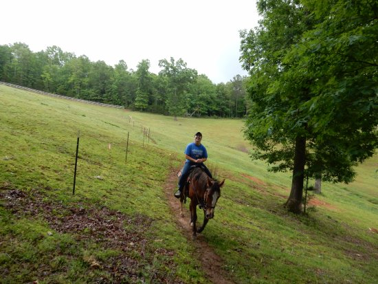 Blanche Manor Horseback Riding : along the pasture