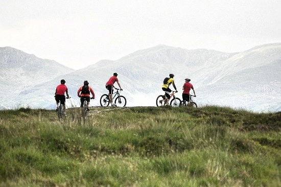 Graythwaite, UK: Bike Riding on Your Doorstep