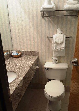 Best Western Garden Inn: Toilet