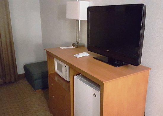 Best Western Garden Inn: TV and fridge