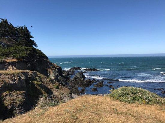 The Sea Ranch, Kaliforniya: Walk On Beach Sea Ranch Access Trail 20