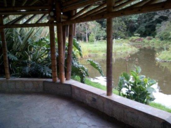 Jardín Botánico de Bogotá Jose Celestino Mutis: zona lago