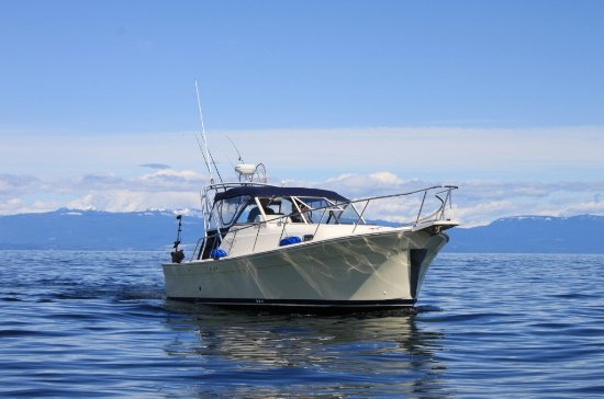 Nanoose Bay, Canadá: The Haida Gold - 30ft Mainship Pilot Rum Runner II with covered seating and fully enclosed washr