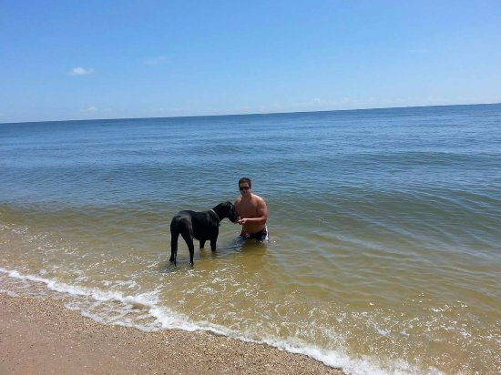 Scotland, MD: Dog Beach