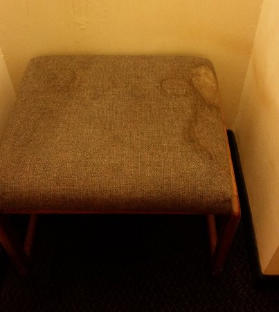 Red Lion Hotel & Conference Center Ellensburg: This is a chair in the room, that's not a shadow on the wall either.
