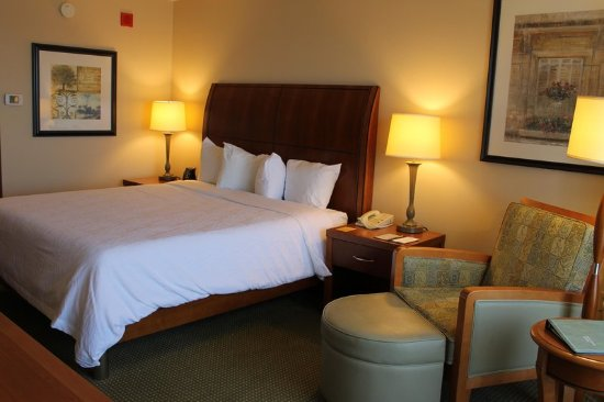 Addison, IL: 1 King Guest Room