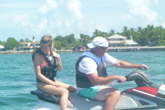 Key West Water Tours : Watching the dolphins play!