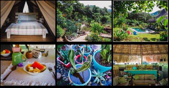 Playa Grande, Kostaryka: Habitación, areas verdes, desayuno, piscina