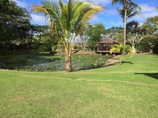 Gecko's Resort: photo1.jpg