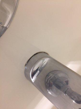 Vedder River Inn: Mold in the bathroom