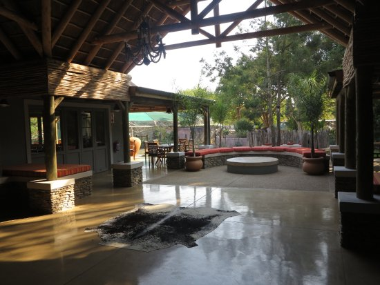 Addo, Sudáfrica: Looking to the outside area from the shop