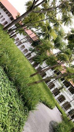 Capella Singapore: photo5.jpg