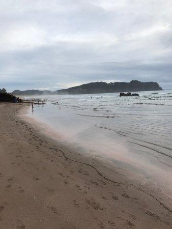 970 Lonely Bay: photo4.jpg