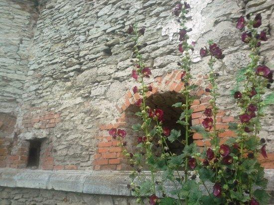 Medzhybizh, Ukraine: Стены