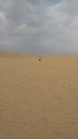 Tottori Sand Dunes Photo
