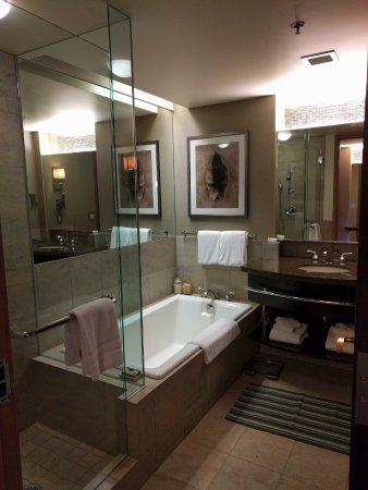 Фотография Hotel Bellevue