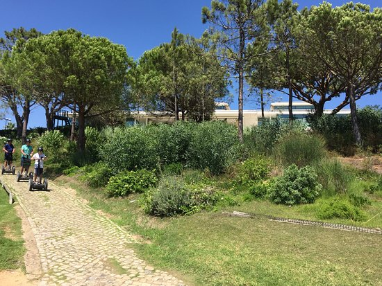 """Algarve By Segway : Through the trails past the """"vanilla"""" trees!"""