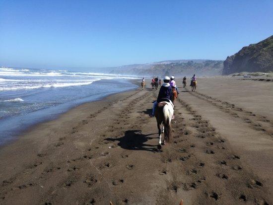 Ross Ranch : Ritt am Irish Beach