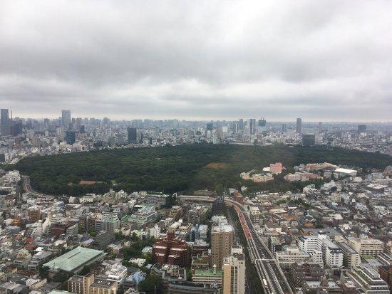 Park Hyatt Tokyo: photo1.jpg