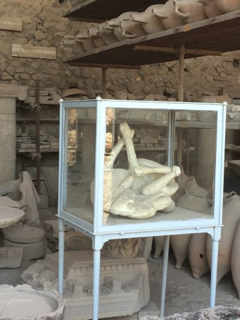 Visite Guidate Pompei: photo3.jpg