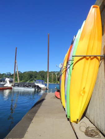 Oregon City, OR: The kayaks and dock where we embarked