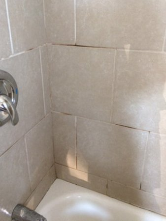Great Lakes Inn & Suites: Mildew in tile grout.