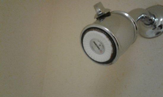 Baymont Inn & Suites Martinsville: Mold on showerhead sprayers