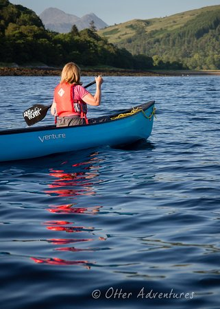 Strontian, UK: Evening canoe trips admiring sunsets and seals